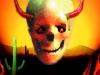 skull5copy
